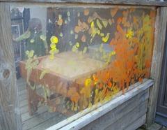 Plexiglass Wall