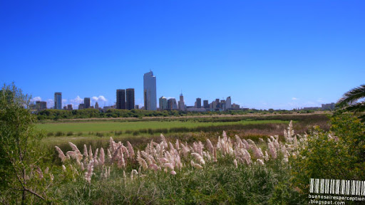 Buenos Aires Skyline, View from Costanera Sur Ecological Reserve, Argentina