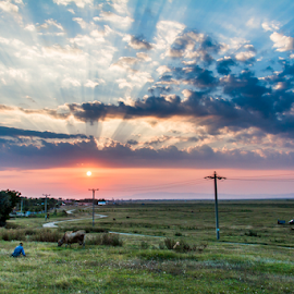 Time by Ovidiu Caragea - Landscapes Cloud Formations ( clouds, grass, sunset, cow, road, peasant )