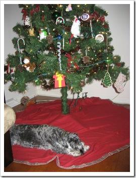 Christmas2009 018