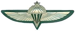 IDF Paratrooper Wings-Sheva Apelbaum