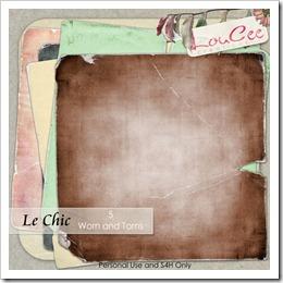 lcc-LeChic-wornandtorns