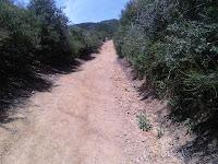 IMG00336-20100528-1058.jpg Photo
