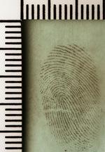 Fingerprints Essay - by Racheshell