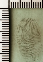 Cool Mint Fingerprint by Jack Spades, on Flickr