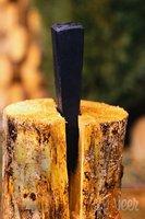 Wedge splits log