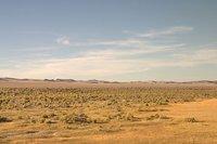 Empty Nevada desert