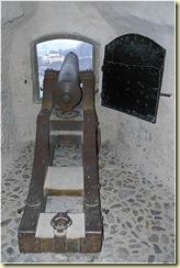 Salzburg-Gun
