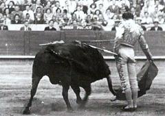 Manolete-Derechazo 001