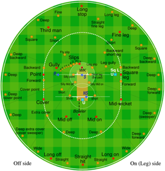 cricket-crossword-fielding