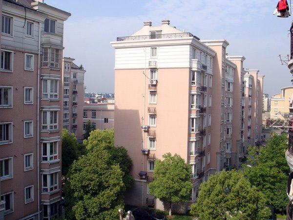 万万、老包、娟姐、李总在杭州竞舟路房子的外部绿化环境