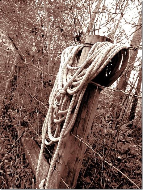 sepia rope
