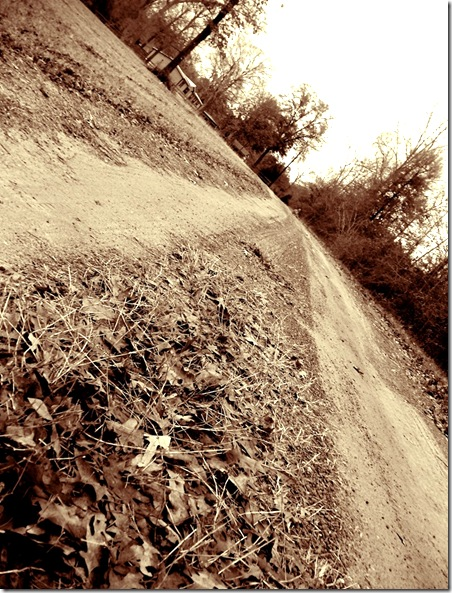 countryroad sepia
