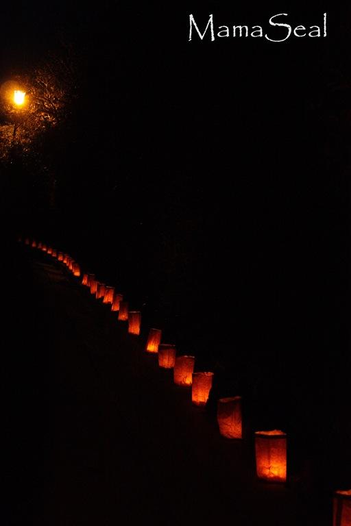 Luminarias 2010