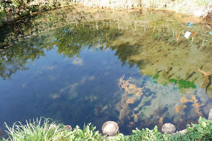 銚子池の写真