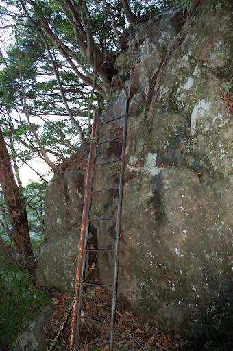 三ツ瀬明神山最初の鉄はしごの写真