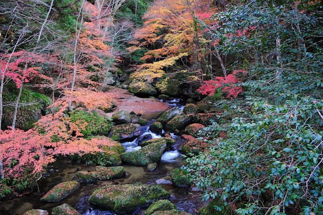 王滝渓谷駐車場の橋の上からの紅葉の写真