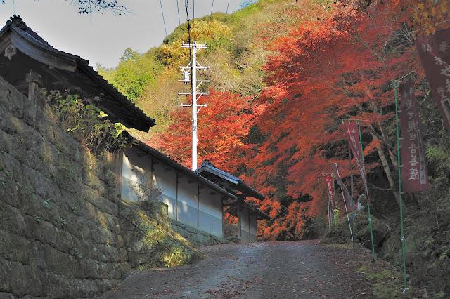 王滝渓谷駐車場の傍のお寺の紅葉の写真