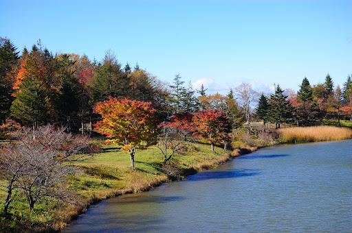 茶臼湖の紅葉の写真