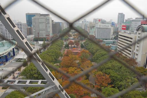 名古屋テレビ塔の階段の途中から久屋大通の紅葉の写真