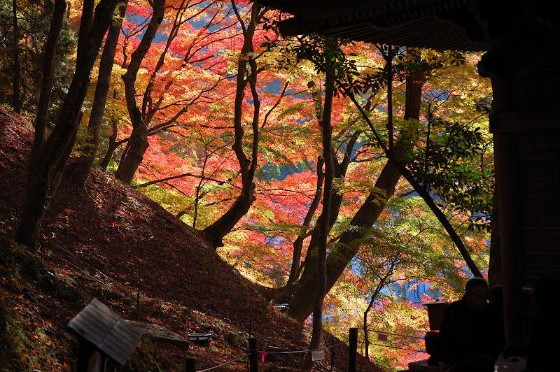 香嵐渓の太子堂の紅葉の写真