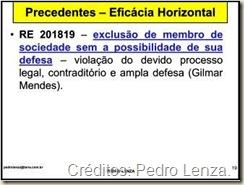 Jurisprudência do STF sobre a eficácia horizontal dos direitos fundamentais. RE 201819 - Exclusão de Membro de Sociedade e Desrespeito ao Direito de Defesa.