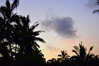 Hawaiian sunset, sillhouetted palms, sliver moon.