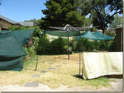 Garden Wrap 029