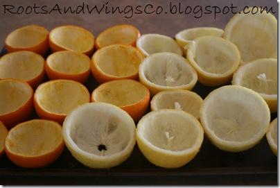 orange rolls a