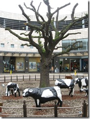 IMG_0077 Oak Court concrete cows