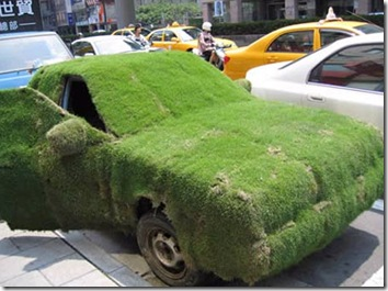 Green grass car