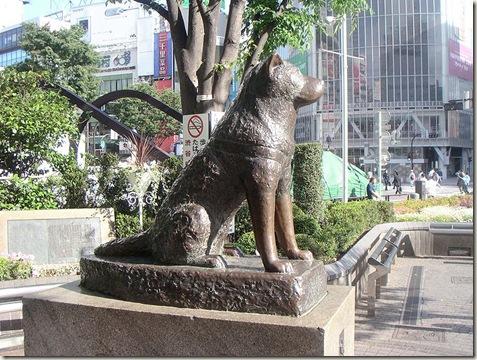 800px-Hachiko200505-4