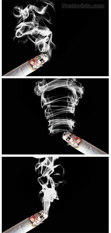 pincel humo