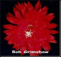 Epi Bob_Grimshaw