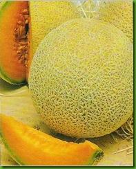 Planters J Melon