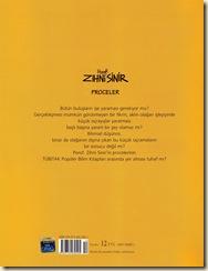 Irfan Sayar-Porof Zihni Sinir-Proceler-002