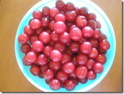 Sour cherry tree upside down cake fruit 010