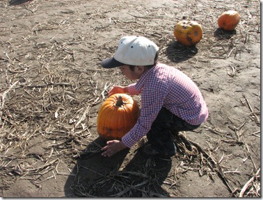 Scholz Pumpkin Farm 070