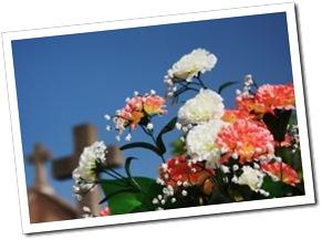 flores e cemiterio