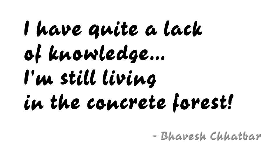 I have quite a lack of knowledge… I'm still living in the concrete forest!