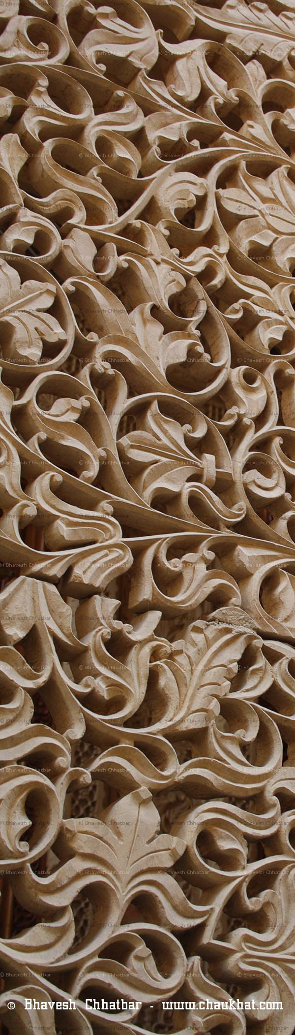 Carvings on a wall of a palace in Jaisalmer