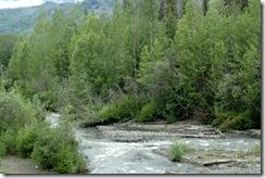 DSC06555 Iskut River