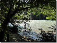 DSC07655 Skagit River