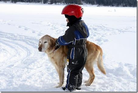 lakedog