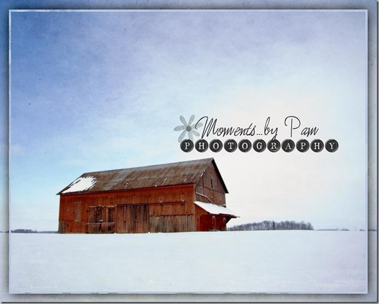 snowy day 118 copy