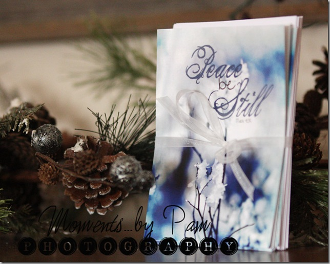Winter Note cards 007 copy