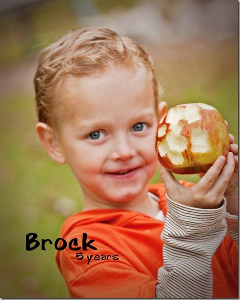 Brock 117 002