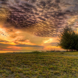 Pasir Jambak Sunset by Hizzband Aditya - Landscapes Prairies, Meadows & Fields ( clouds, sand, waves, sea, beach, sun, coast, tree, indonesia, padang, sunset, wave, cloud, trees, sunrise, hizzband )