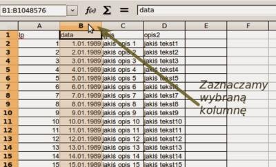 Blokowanie kolumny w arkuszu kalkulacyjnym typu Excel