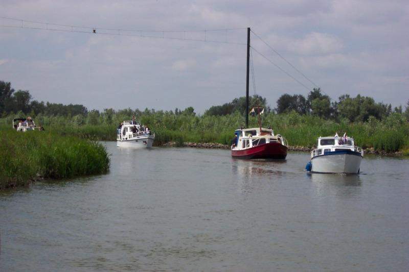 Biesbosch (33).JPG